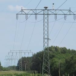 Kabel - Tams Elektronik